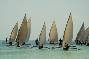 """race of """"dhow """""""