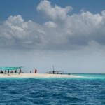 Blu safari & Prison Island